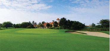3_relax_1_golf_5
